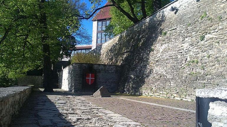 Sad-datskogo-korolya-i-datskiy-flag-v-Tallinne