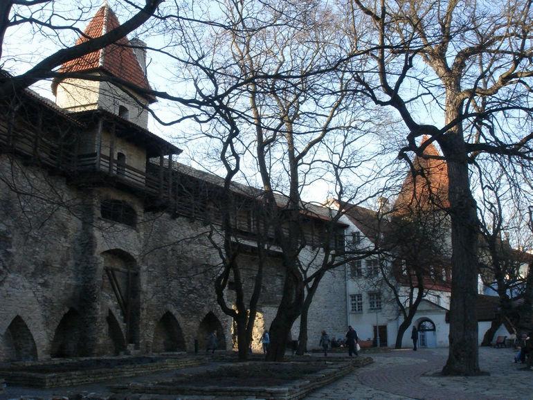 Tallinn_Danish_King's_Garden