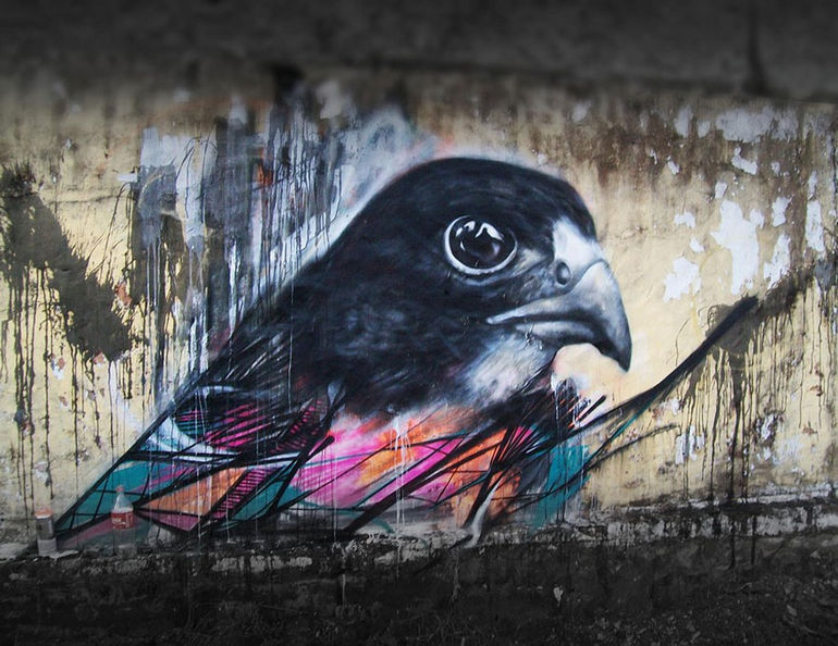 graffiti-birds-street-art-L7m-13