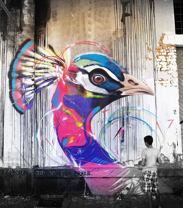 graffiti-birds-street-art-L7m-8