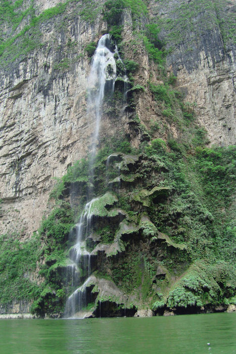 vodopad-Rozhdestvenskoe-derevo-v-Meksike