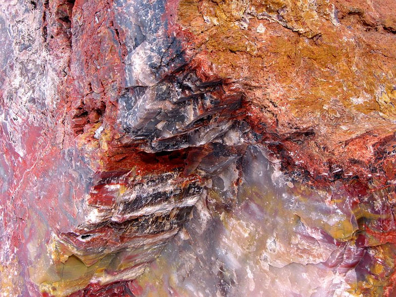 1271430743_09_petrified_forest