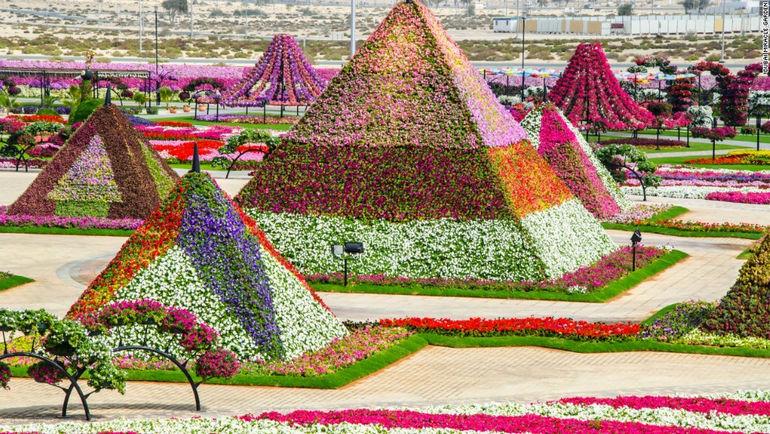 131004161853-unexpected-desert-things-dubai-miracle-garden-horizontal-large-gallery