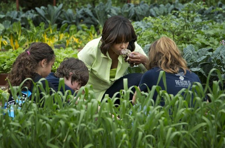 Michelle_Obama_Garden_0a87e1369771622