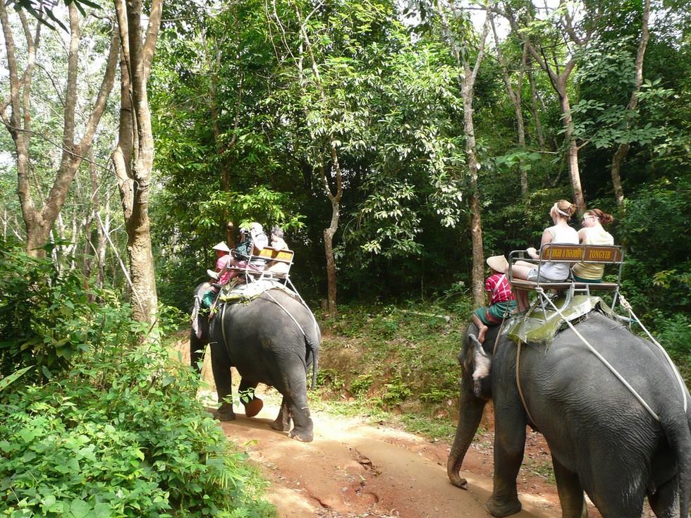phuket-safari3