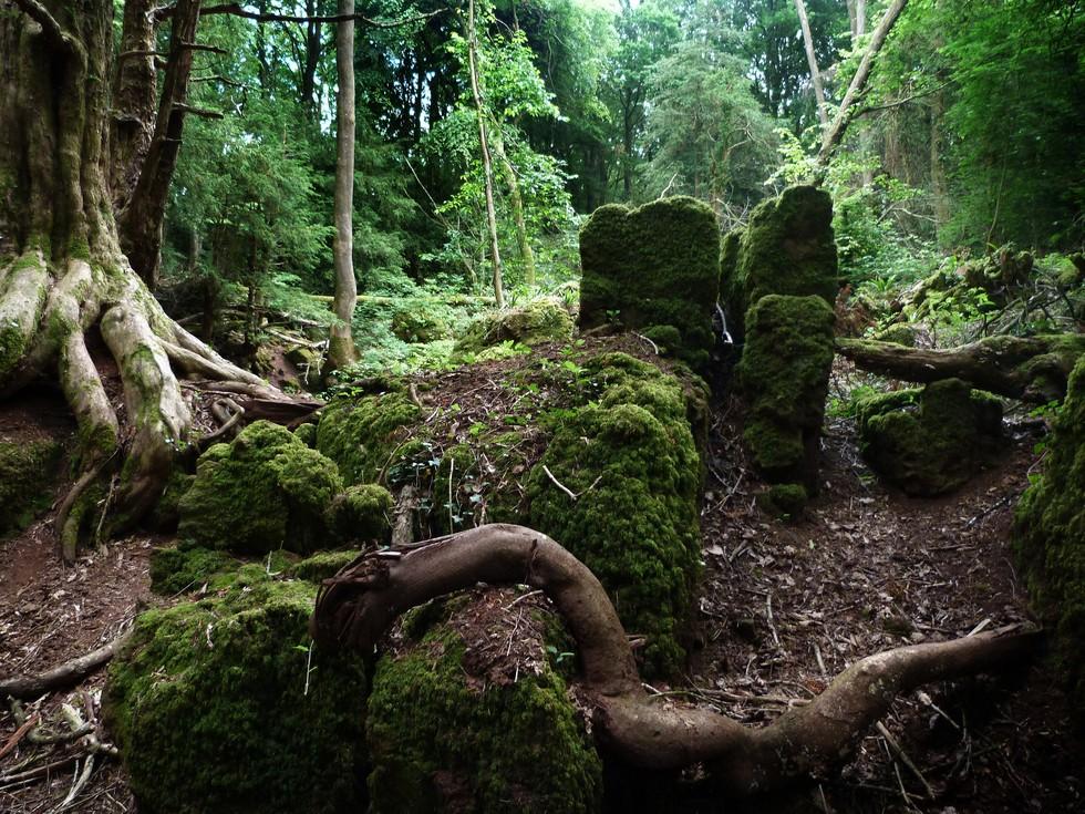 puzzlewood_86_by_ladyxboleyn-d6cp2ry