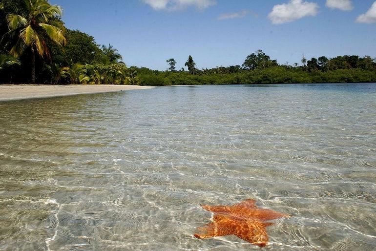 Звездный пляж Бокас-дель-Драго (Панама)