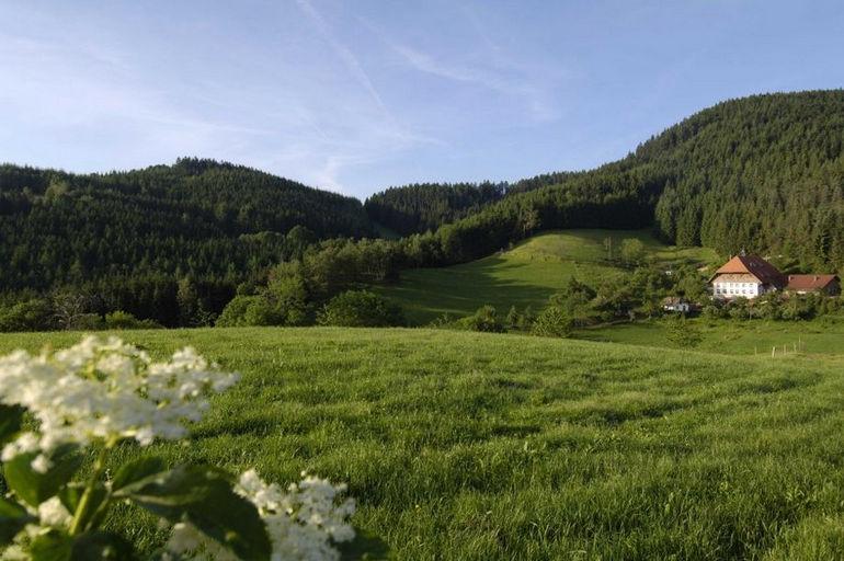 Best_Western_Hotel_Schwarzwald_Residence-Triberg_im_Schwarzwald-Umgebung-2-42263