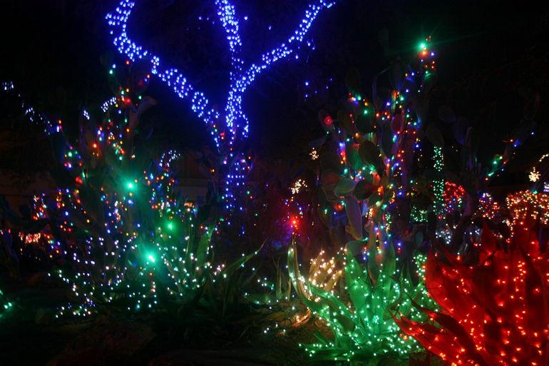 Ethel-M-Chocolate-Factory-Christmas-Lights