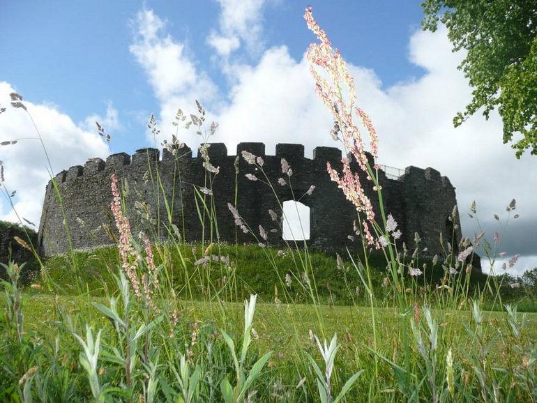 fowey-restormel-castle-monuments-1207-large