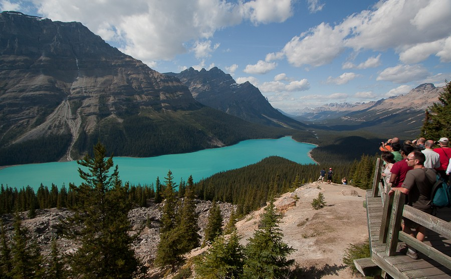 people-viewing-peyto-lake-from-wooden-platform-in-banff-national-park