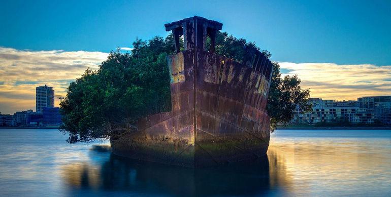 SS Ayrfield (Австралия)