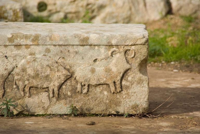 Animal_Relief_in_Tarxien_Malta