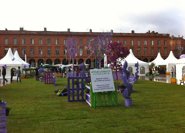 Фестиваль Toulouse Violet Festival (Франция)