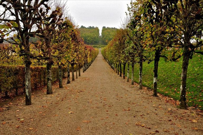 Le_Chateau_de_Villandry_Gardens