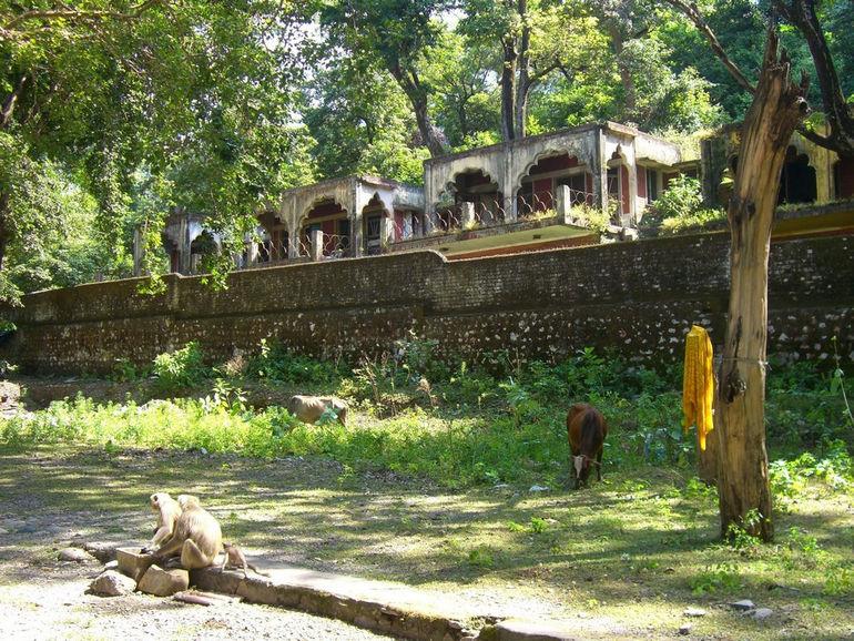 Ашрам Битлз (Индия)