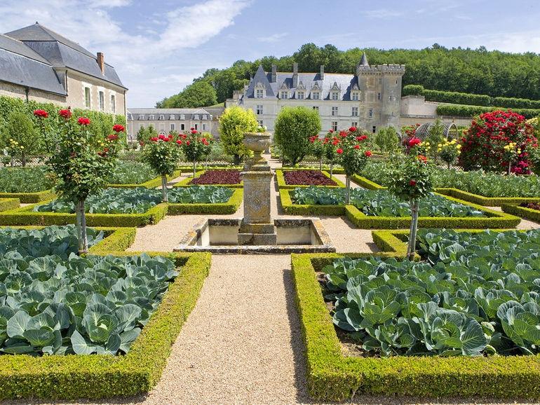 Formal garden in front of castle, Chateau De Villandry, Indre_Et_Loire, France