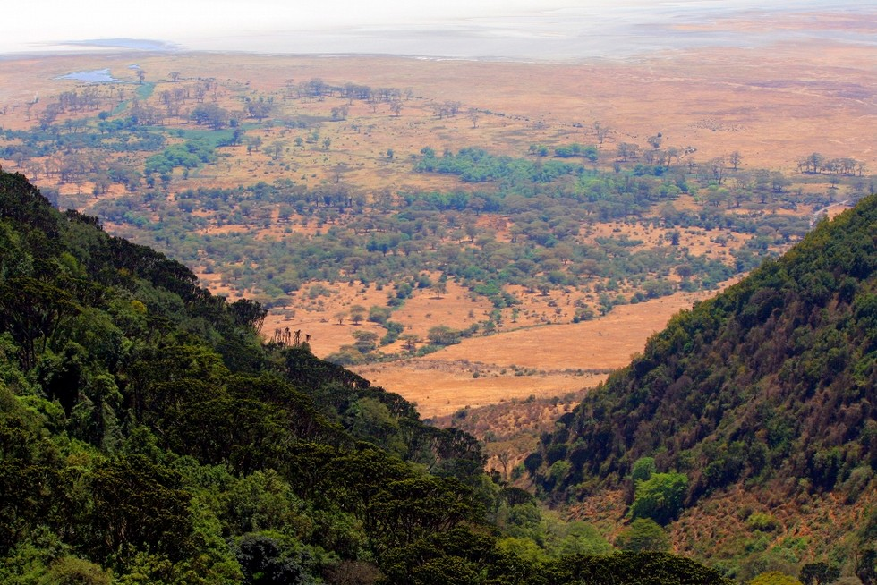 ngorongoro-crater-looking-from-above