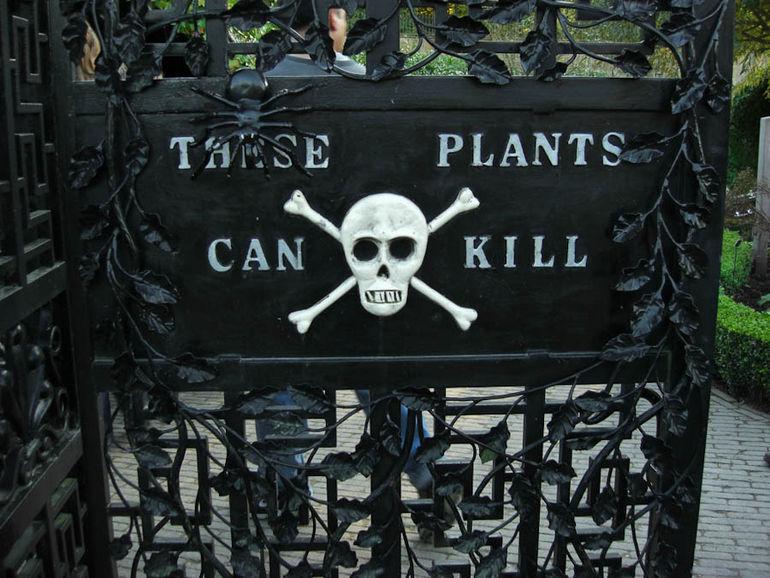 Ядовитый сад Альнвика (Великобритания)
