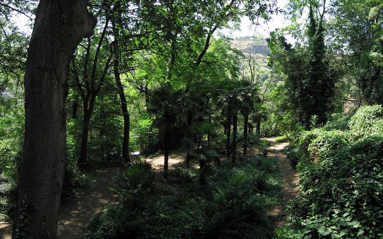 Tbilisi_Botanical_Garden3