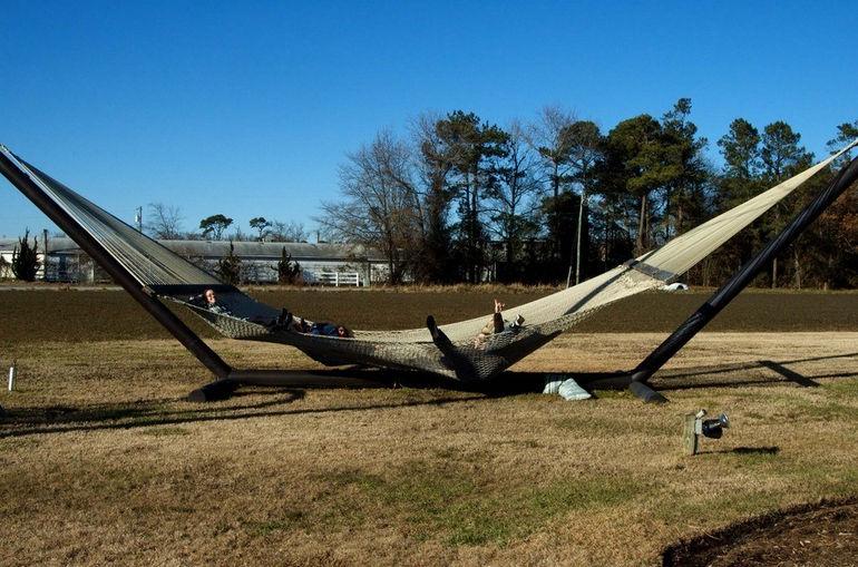 largest-hammock_0