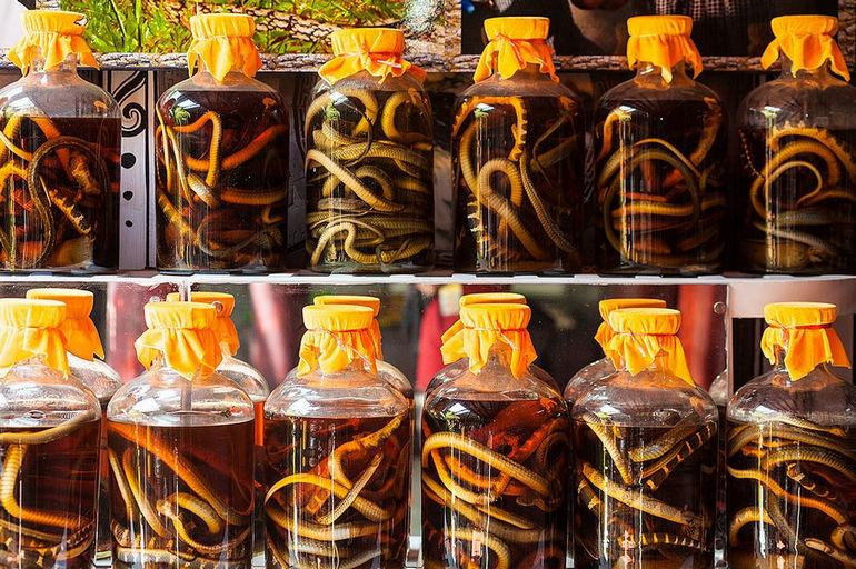 Snake_Wine