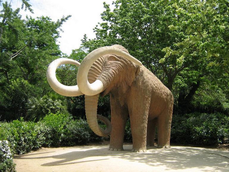 parc-de-la-ciutadella-woolly-mammoth-barcelona