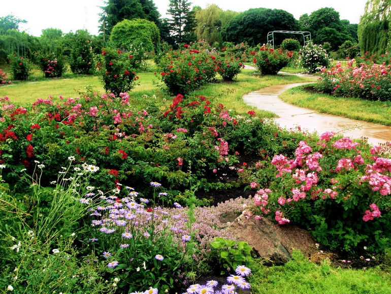 Национальный ботанический сад им. Гришко