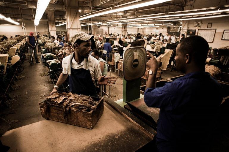 Handmade_cigar_production,_process._Shopfloor_of_Tabacalera_de_Garcia_Factory._Casa_de_Campo,_La_Romana,_Dominican_Republic_(2)