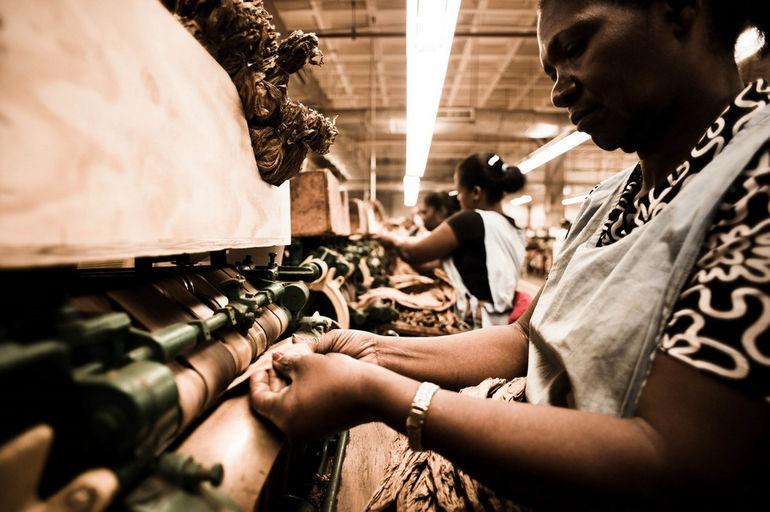 Handmade_cigar_production,_process._Tabacalera_de_Garcia_Factory._Casa_de_Campo,_La_Romana,_Dominican_Republic_(5)