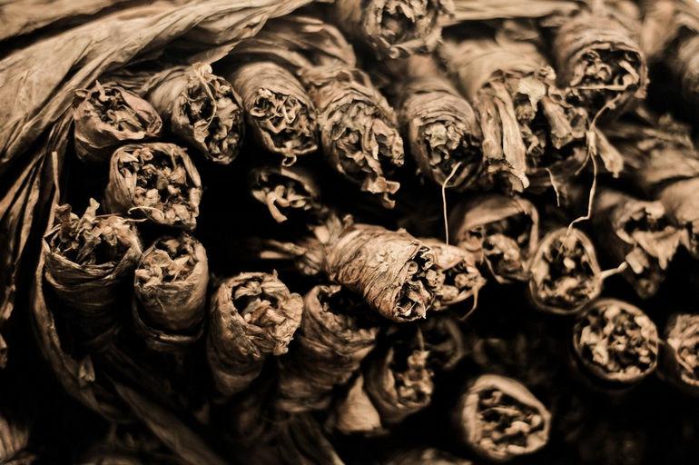 Handmade_cigars._Tabacalera_de_Garcia_Factory._Casa_de_Campo,_La_Romana,_Dominican_Republic