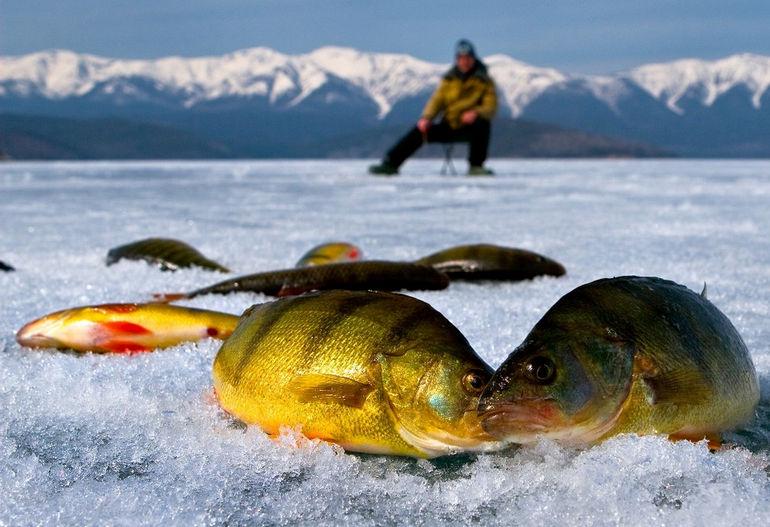 baikal_fishing_chivirkuy
