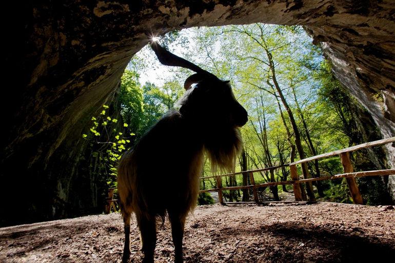 Пещеры Сугаррамурди