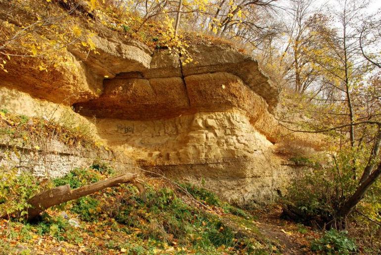 Парк Дворянское гнездо в Орле (Россия)