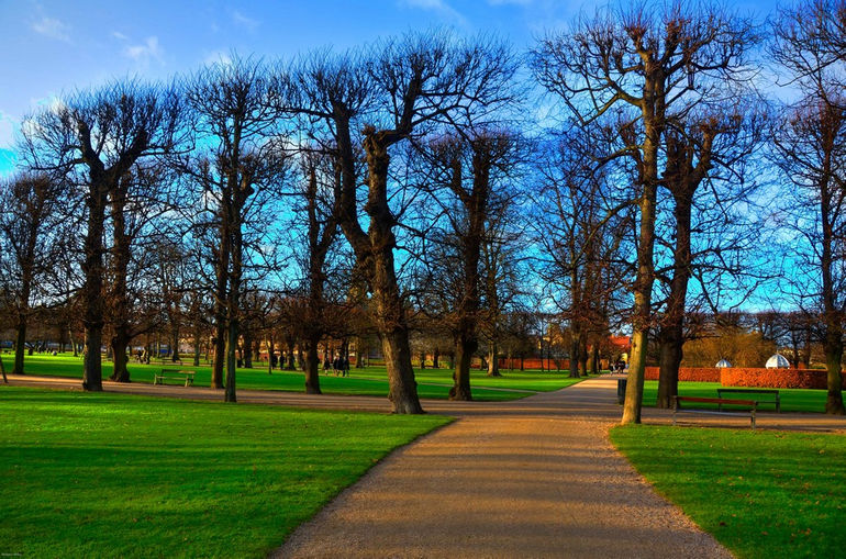 denmark-trees-palace-hdr