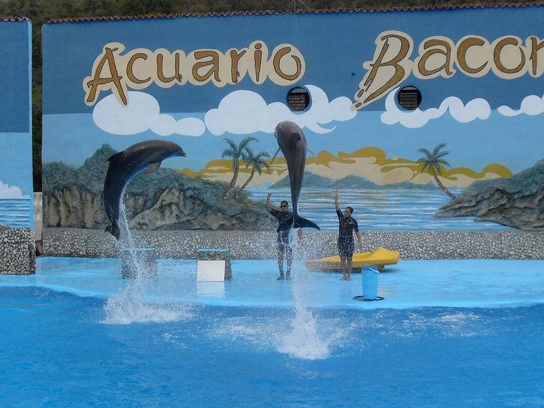 Baconao-Aquarium-tinali778-Flickr