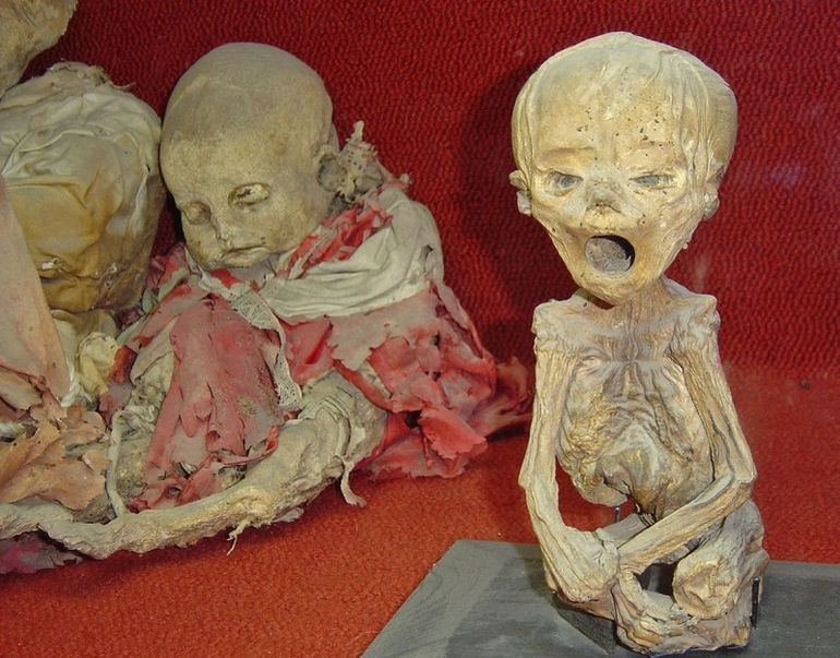 baby-mummies-at-the-mummification-museum