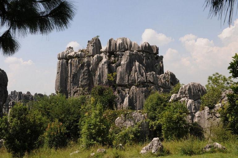 stoneforest8