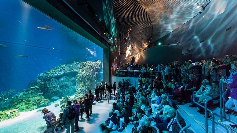 National-Aquarium-Denmark