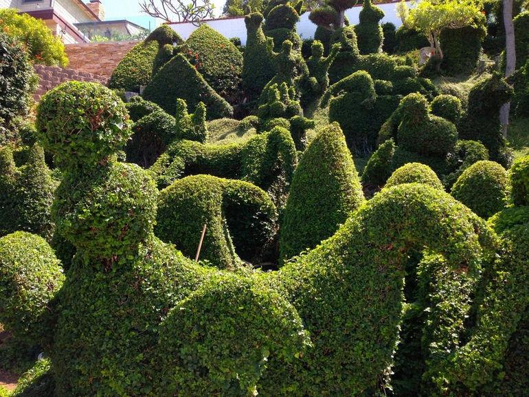 topiary03-1024x768