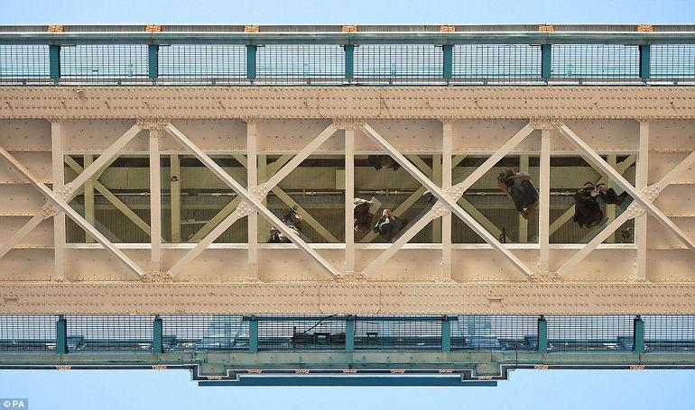 Stekljannyj-pol-na-Taujerskom-mostu-7