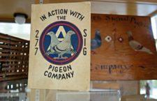 The American Pigeon Museum: американский музей голубей (США)