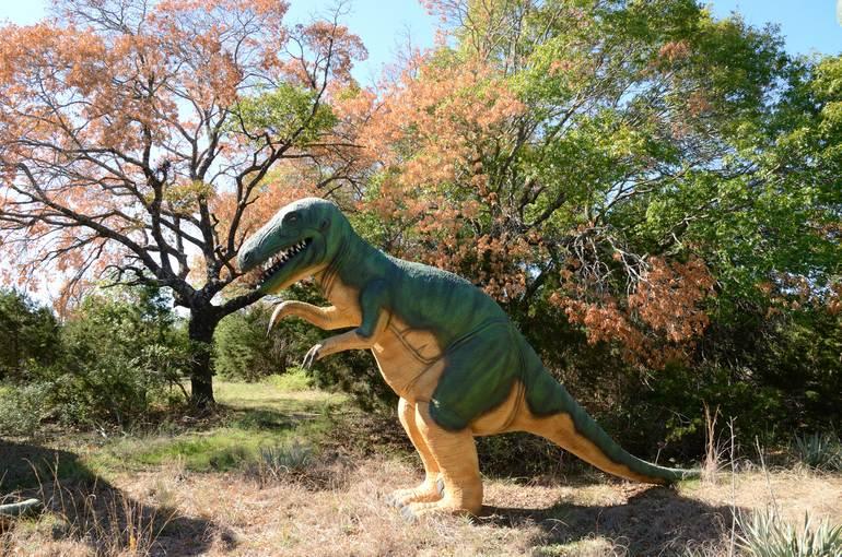 Dinosaur Valley State Park: парк «Долина динозавров» в Техасе (США)