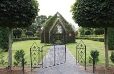 Дерево церковь (Новая Зеландия)