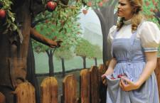Дом музей Дороти и страны Оз (США)