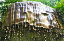Источник в Нерсборо превращает объекты в камень (Великобритания)