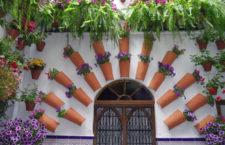 Фестиваль двориков в Кордове (Испания)