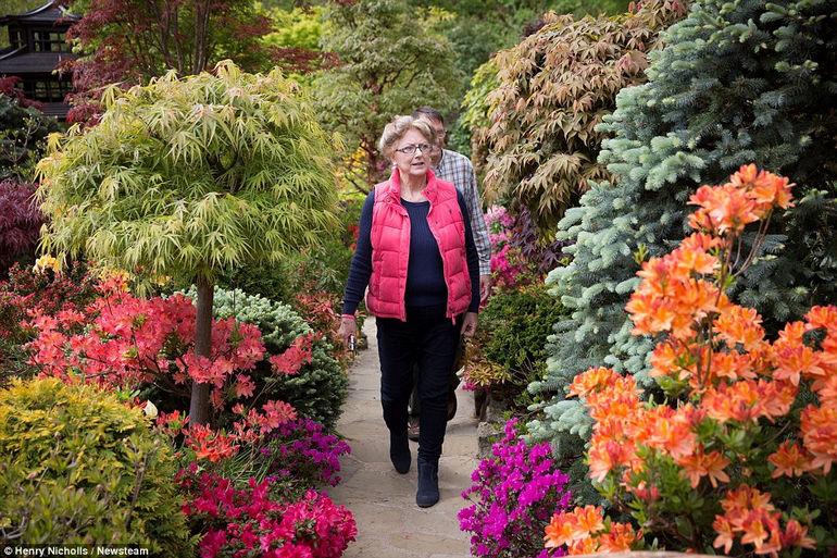 Four Seasons Garden: удивительный сад в Британии