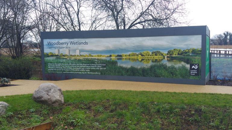 Болота Вудберри в Лондоне (Великобритания)