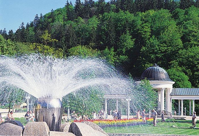 Отдых в отеле Трускавца круглый год